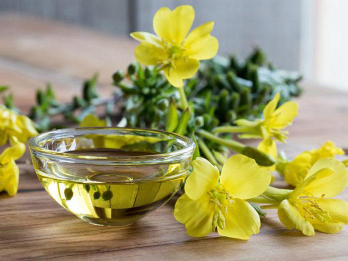Olej z wiesiołka i jego właściwości lecznicze